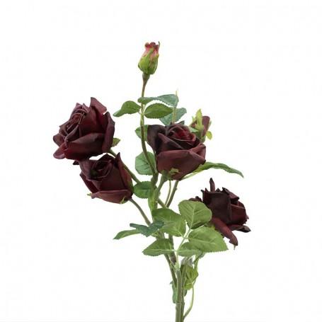 Fascio di Rose e Boccioli Bordeaux 75 cm