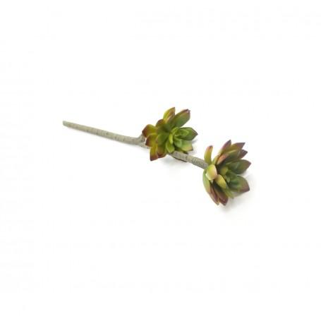 Ramo con 2 Fiori Grassi Verde Autunnale H.45 cm