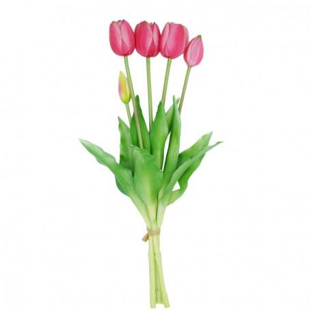 Fascio di 5 Tulipani Fucsia 39 cm
