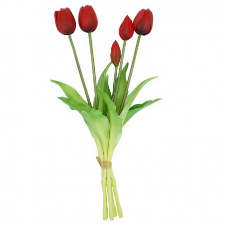 Fascio di 5 Tulipani Rossi 39 cm
