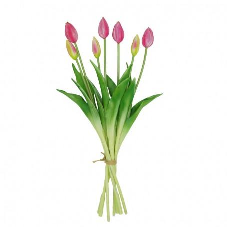 Fascio di 7 Tulipani Fucsia 44 cm