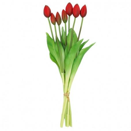 Fascio di 7 Tulipani Rossi 44 cm